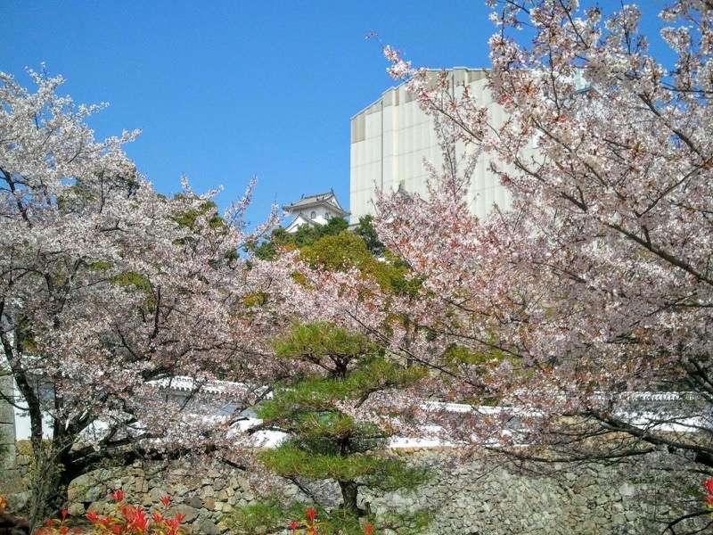 姫路城 菱の門いの門の間5