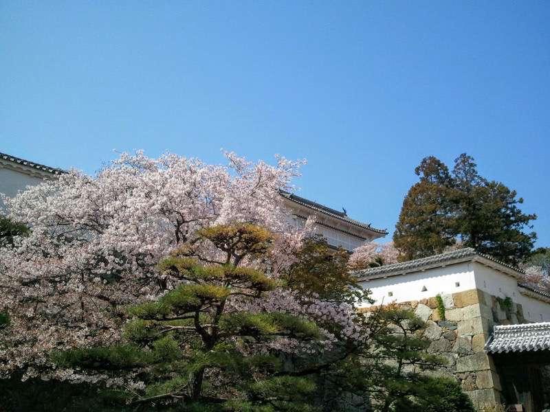 姫路城 菱の門いの門の間4