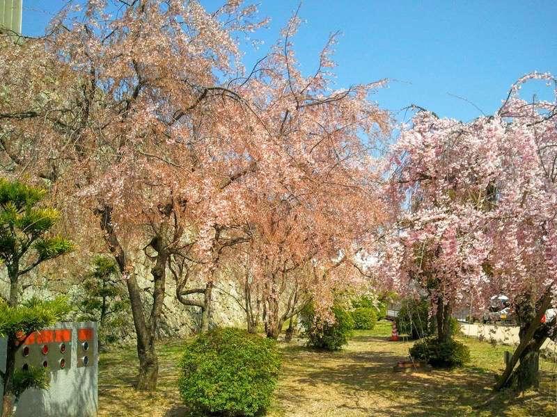姫路城 ぬの門とりの門の間2