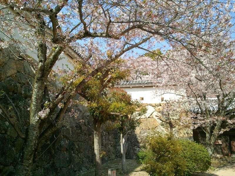 姫路城 ろの門付近