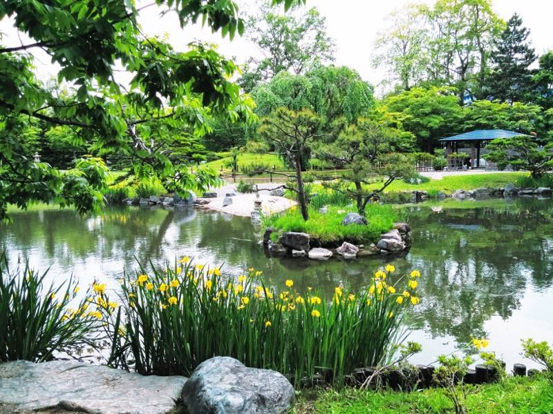 中島公園 日本庭園園内11