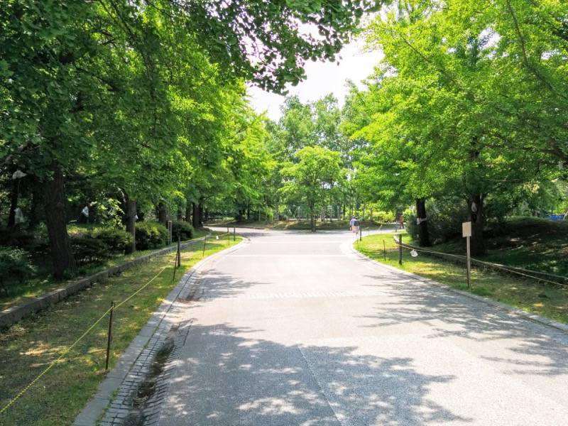 中島公園 園内風景1