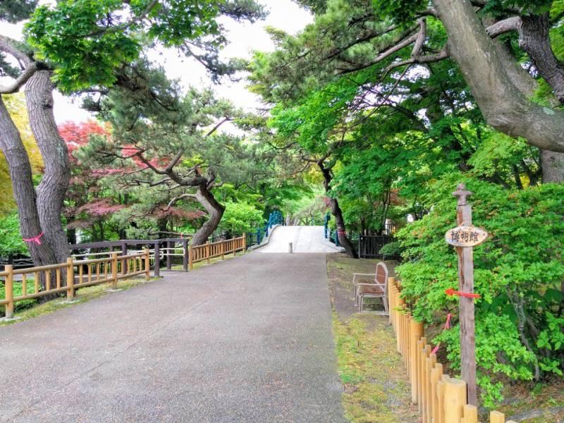 函館公園 園内歩道6