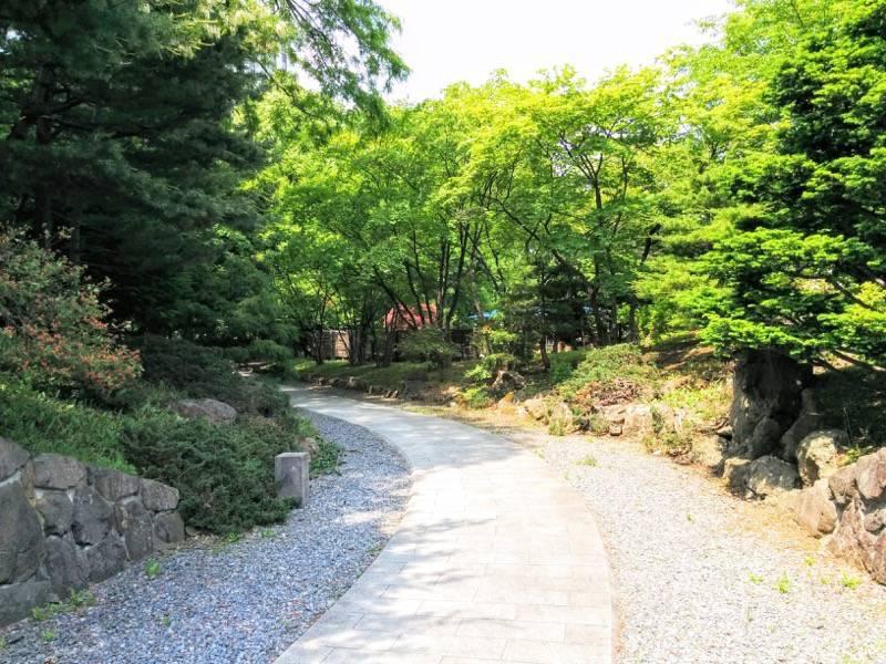 中島公園 日本庭園園内1