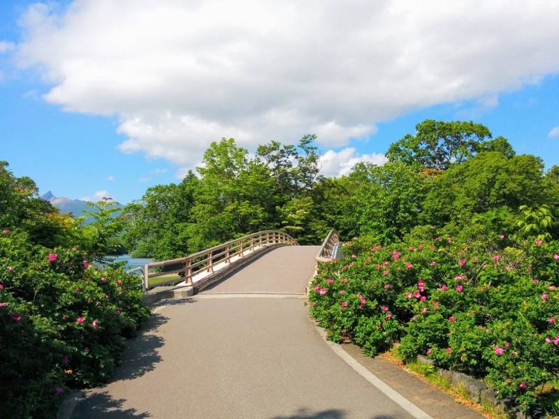大沼公園 大島の路 西大島橋