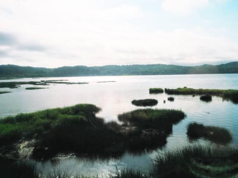 釧路 根室 厚岸湖3