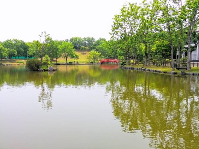 鶴ケ岱公園 ひょうたんの池2