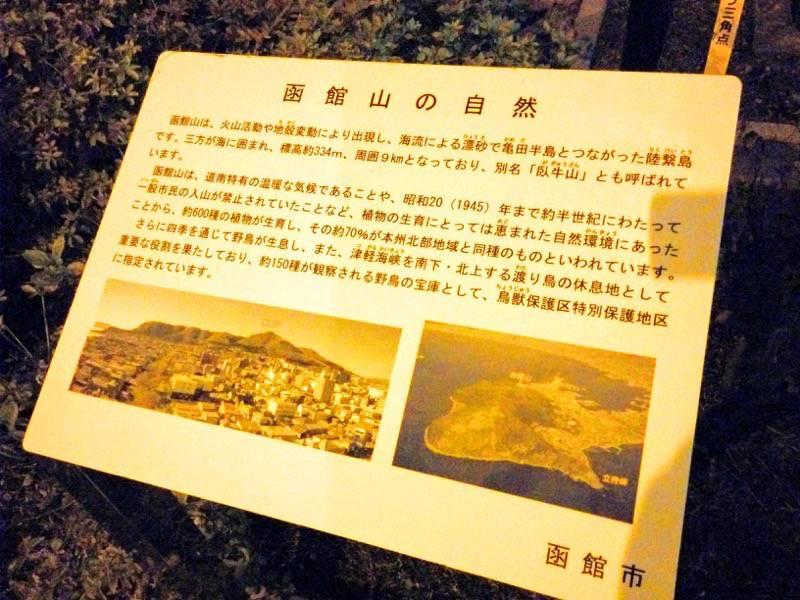 函館山 函館山の自然