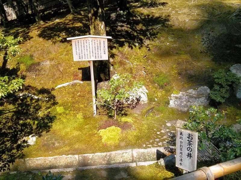 銀閣寺 お茶の井2