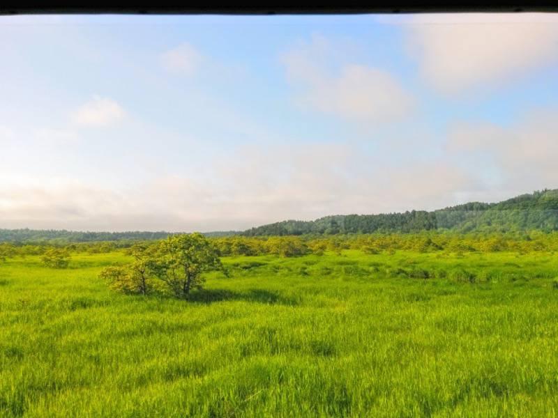 釧路 根室 厚岸 根室間の湿原1