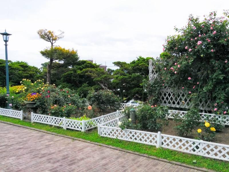 函館市旧イギリス領事館 ガーデン10