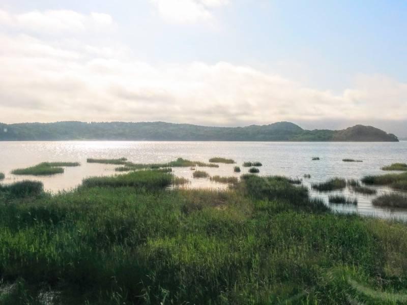 釧路 根室 厚岸湖1