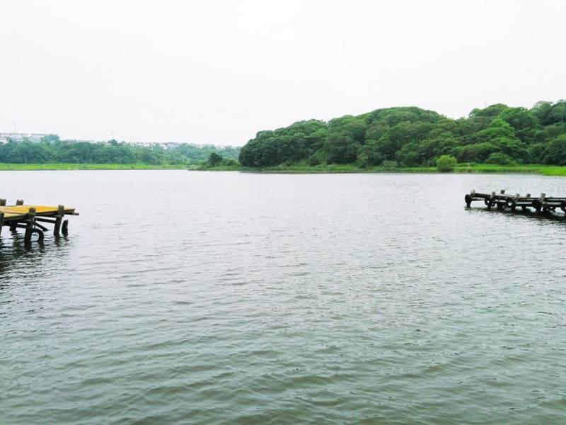 釧路 春採湖2