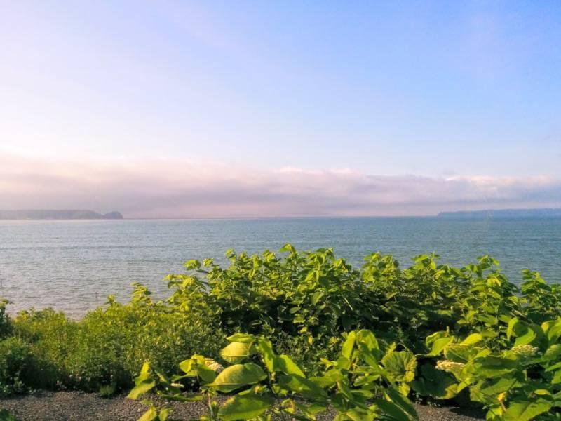 釧路 根室 厚岸の海1
