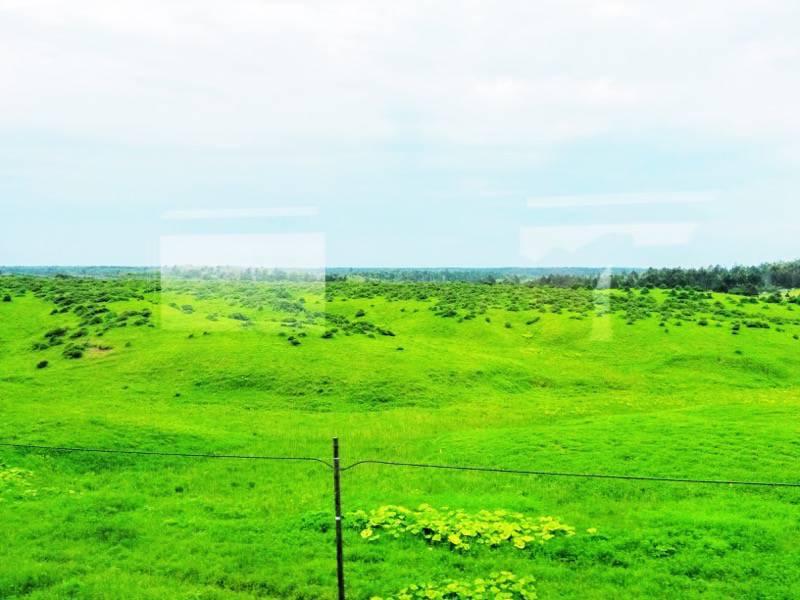 釧路 根室 厚岸 根室間の湿原9