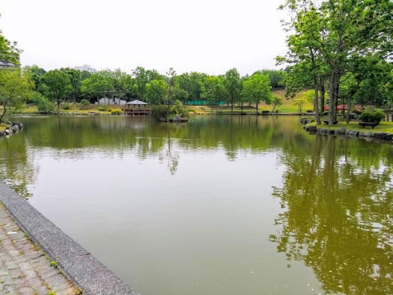 鶴ケ岱公園 ひょうたんの池1