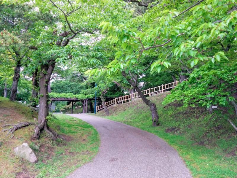 函館公園 園内歩道4
