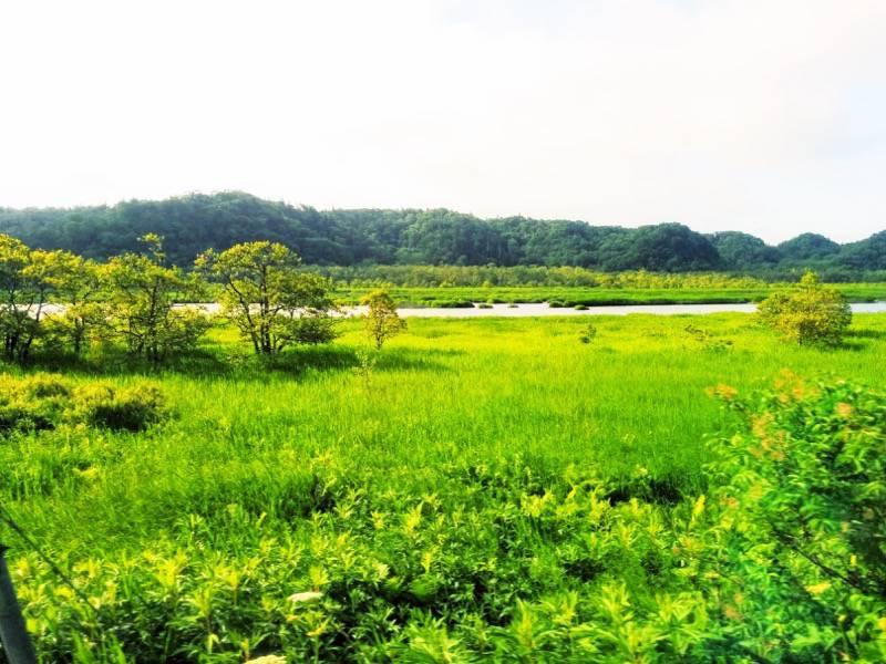 釧路 根室 厚岸湖6