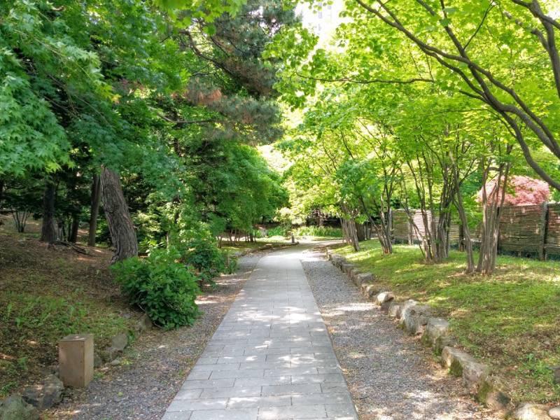 中島公園 日本庭園園内2