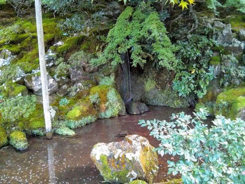 銀閣寺 洗月泉