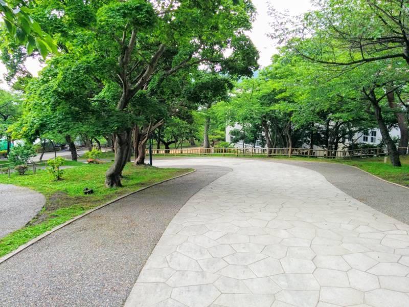 函館公園 園内歩道9