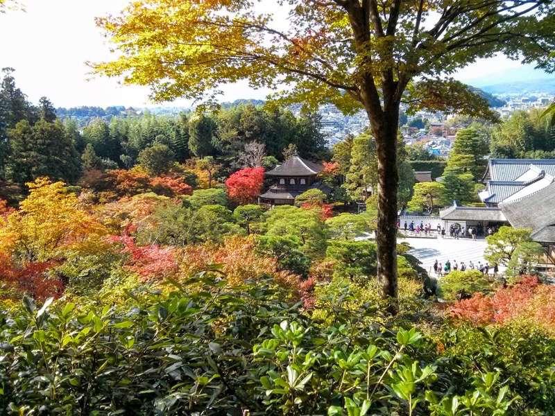 銀閣寺 山道から見た観音殿