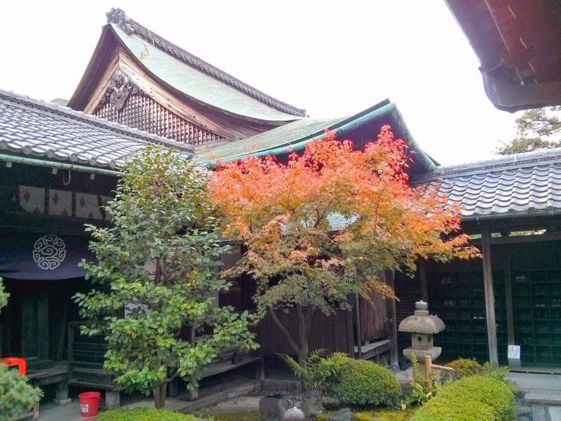 東寺 観智院5