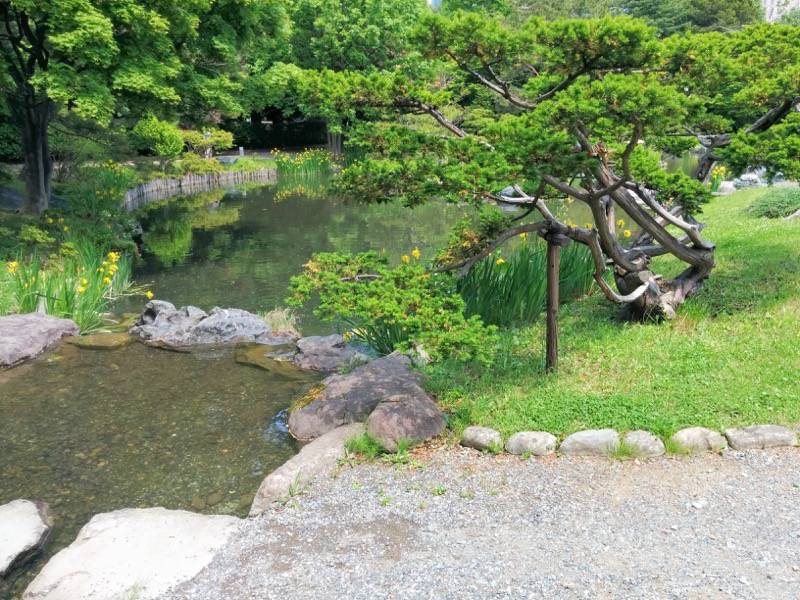 中島公園 日本庭園園内7