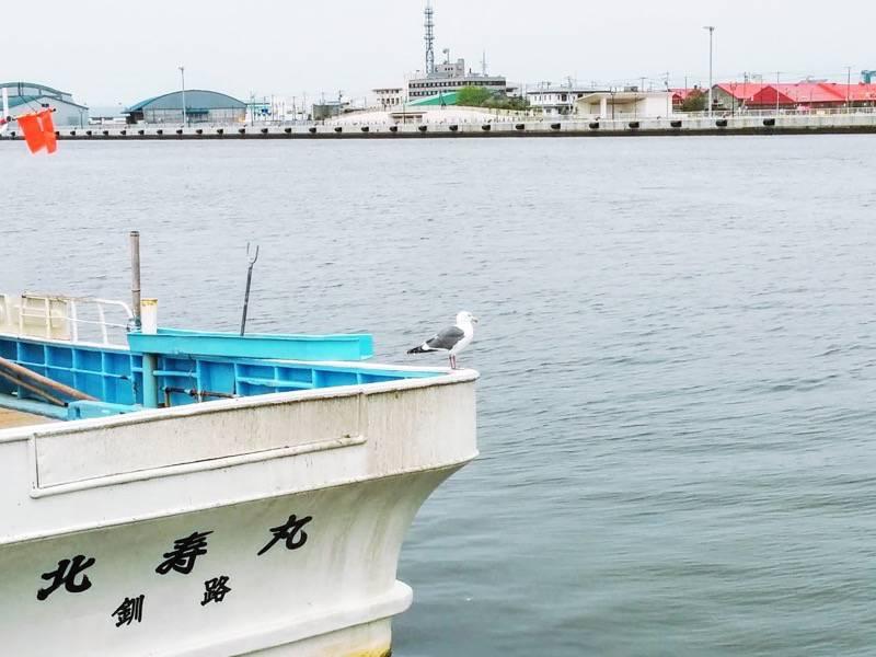 釧路 かもめ船の上