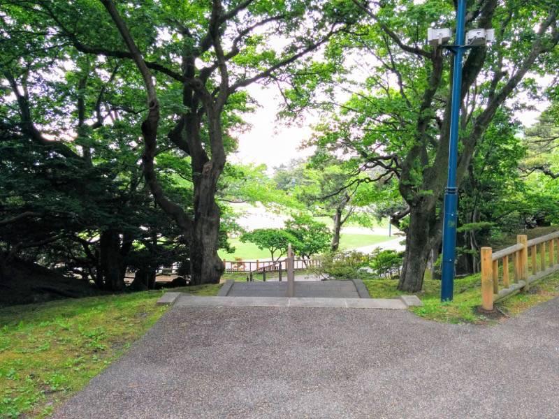 函館公園 園内歩道2