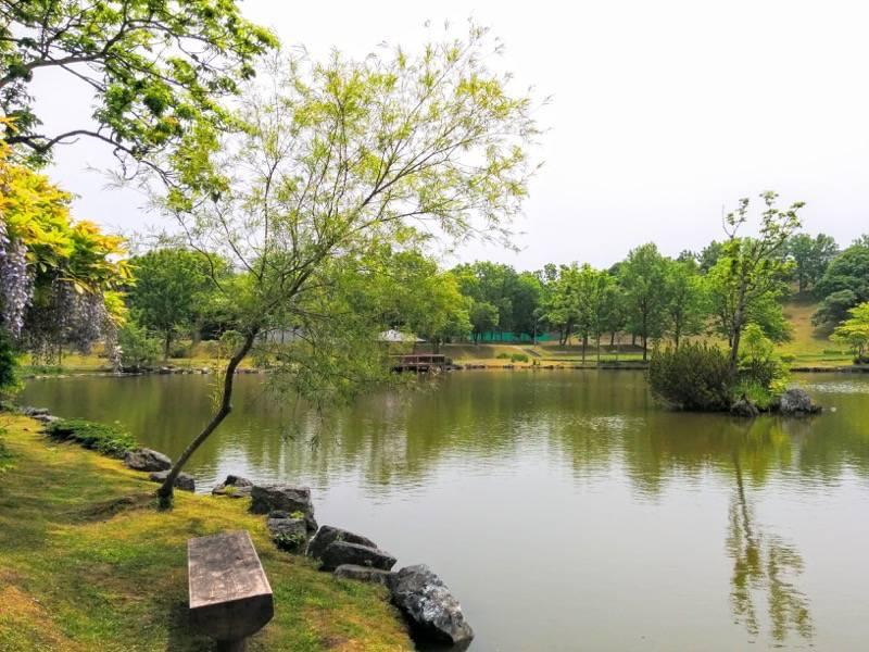 鶴ケ岱公園 ひょうたんの池3