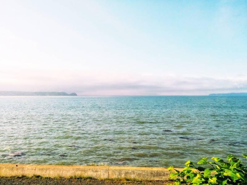 釧路 根室 厚岸の海3