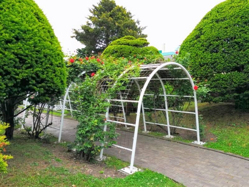 函館市旧イギリス領事館 ガーデン4