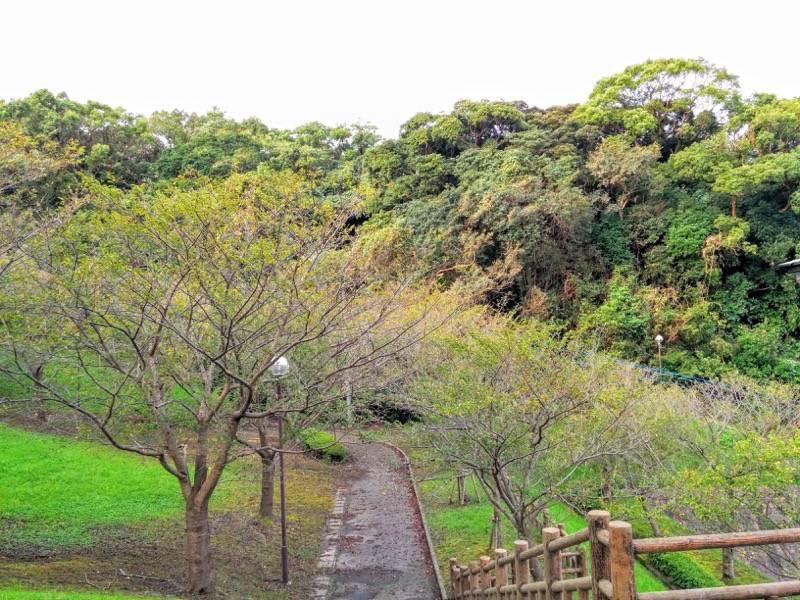 多賀山公園 園内1