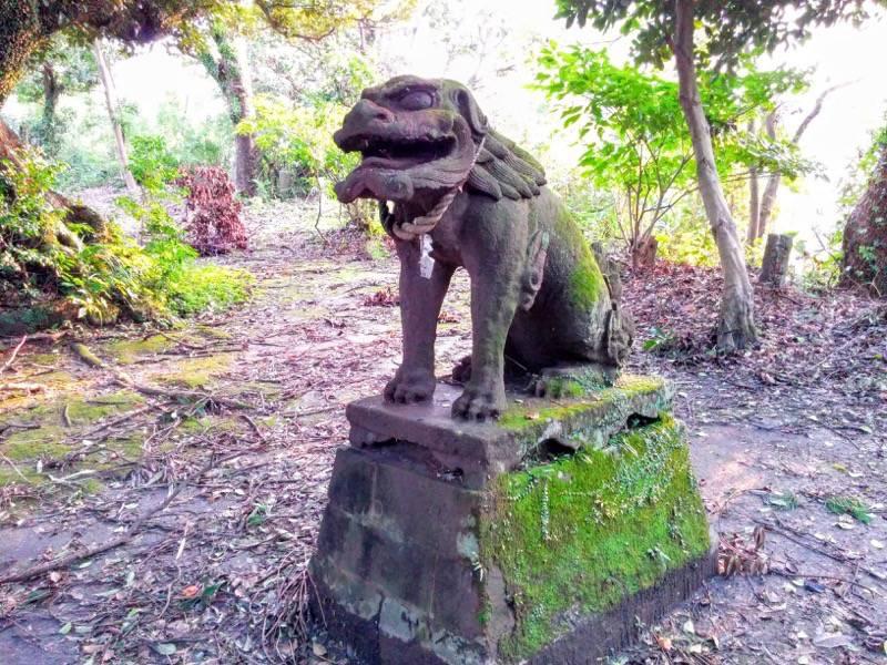 多賀神社 狛犬角なし