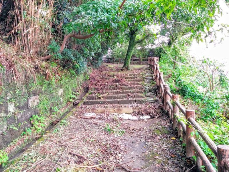 東福寺城跡4