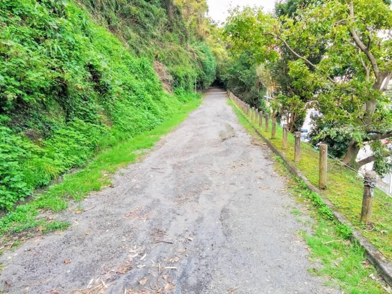 城山自然遊歩道2