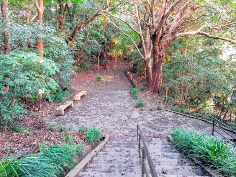 東福寺城跡24