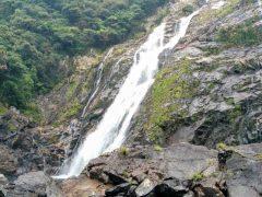 屋久島−大川の滝