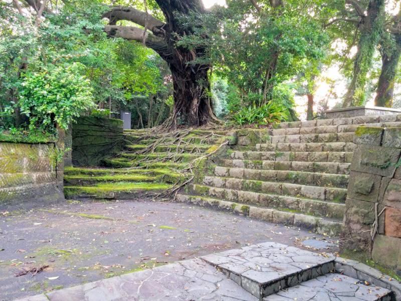 多賀山公園 園内4