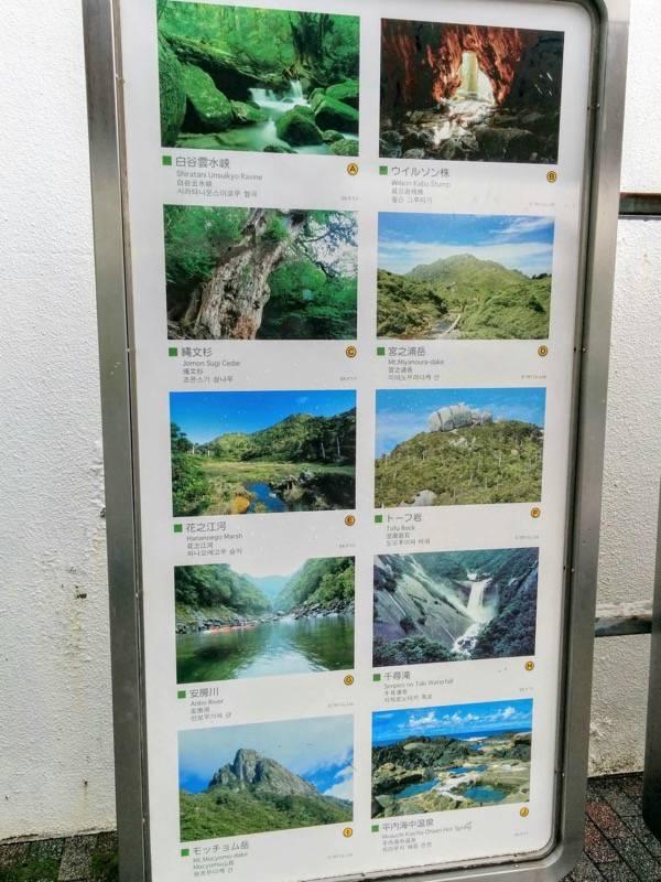 屋久島空港 観光名所