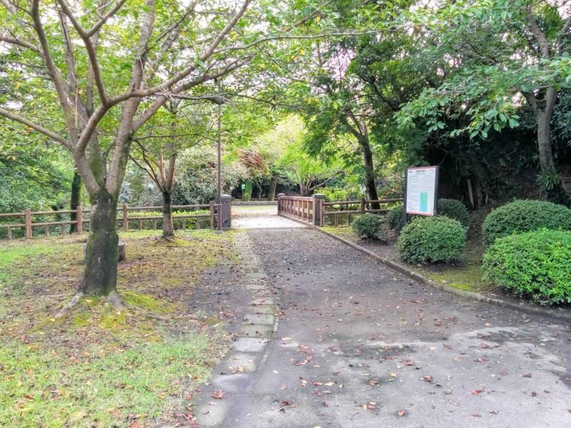 多賀山公園 園内2