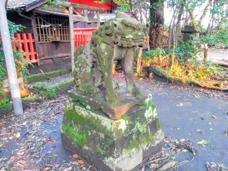 多賀神社 狛犬角あり