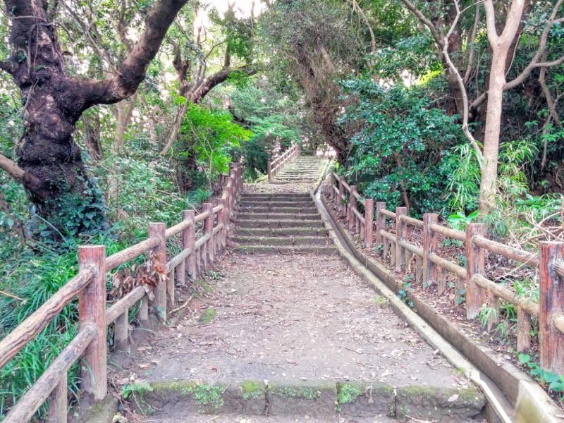 東福寺城跡9