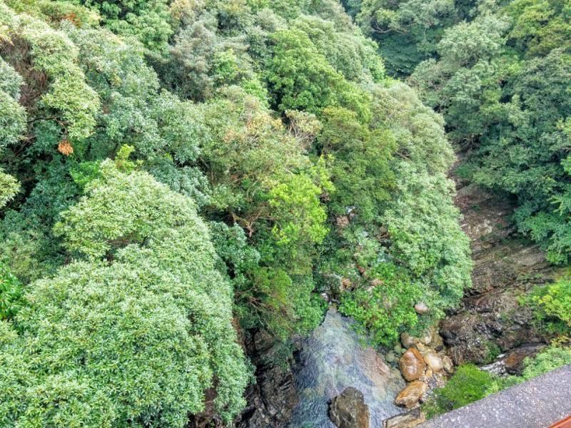 竜神の滝 滝の下の川1