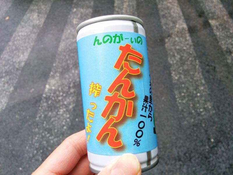 千尋の滝 たんかんジュース