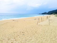 屋久島−いなか浜