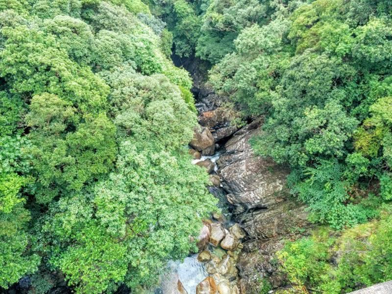 竜神の滝 滝の下の川2