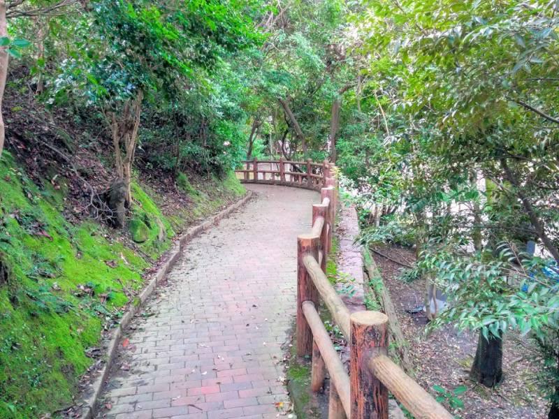 多賀山公園 園内6