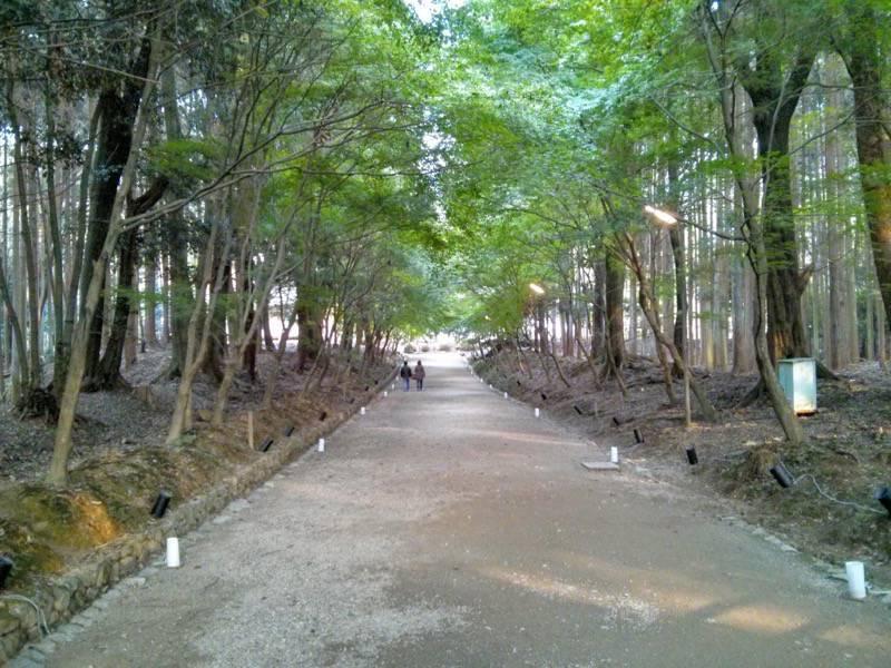 醍醐寺 西大門後ろの参道
